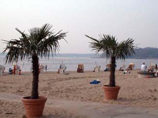 palmenstrände in europa