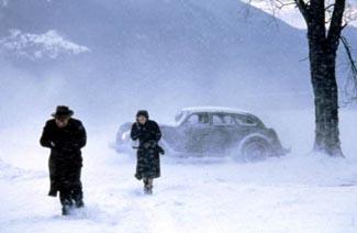 Snow Falling on Cedars - A-Level English - Marked by Teachers.com